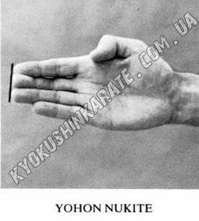 1392054389_1275050480_yohon-nukite